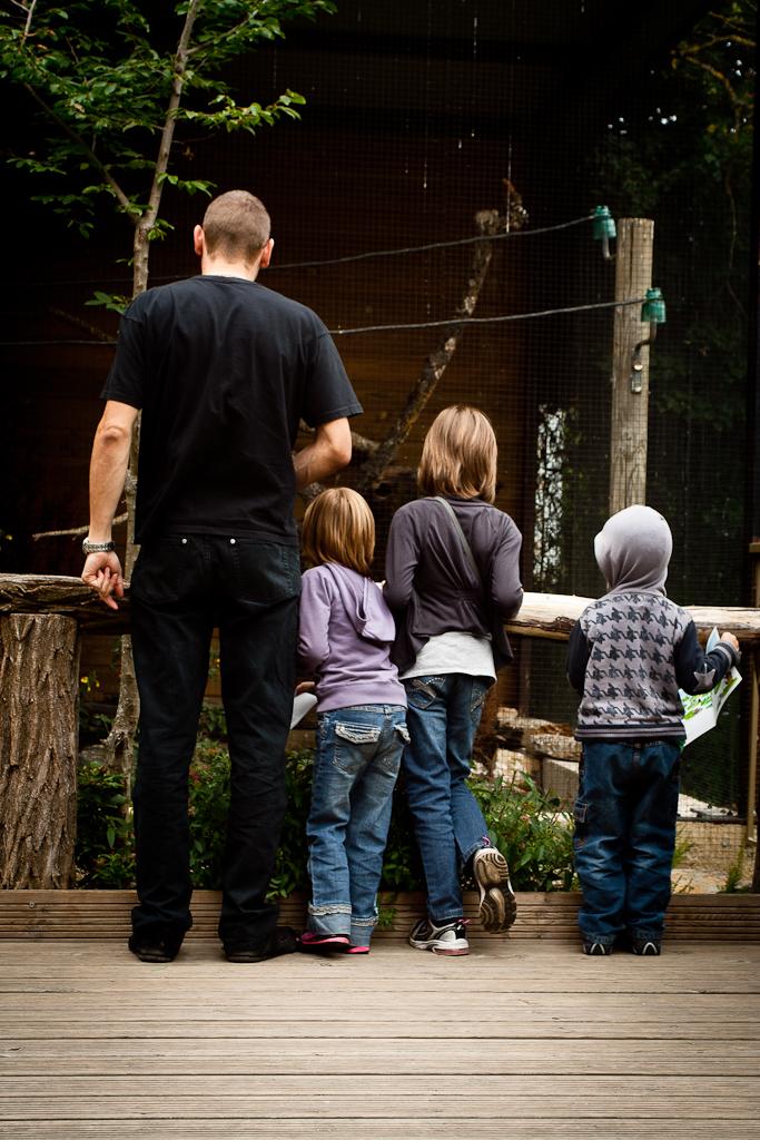 http://www.fredetsev.eu/galeriesLR/zoo_juillet2011_portraits350D/content/images/large/IMG_6331.jpg
